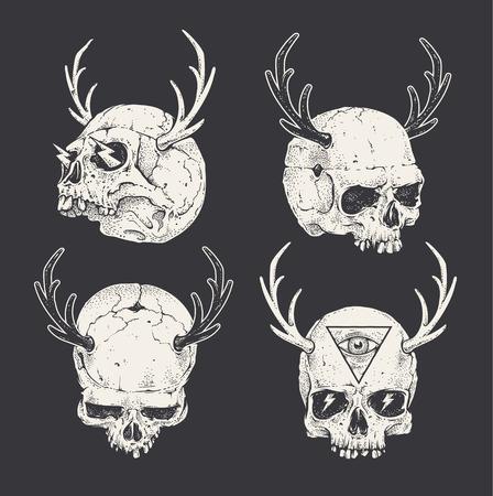 skull drawing: Set of horned skulls. Hand drawn skulls. Vector art.