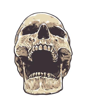 Anatomic Grunge Skull Vector Art. Detailed hand drawn illustration of skull isolated on white background. Colored version. Tattoo style skull art. Grunge weathered illustration. 向量圖像