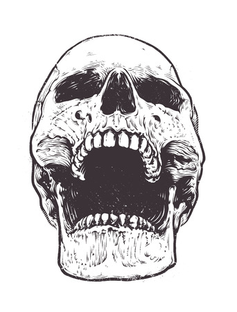 Anatomic Skull Vector Art. Detailed hand-drawn illustration of skull with open mouth. Grunge weathered illustration. Ilustração