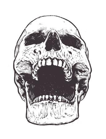 Anatomiczny Czaszka grafika wektorowa. Szczegółowe ręcznie rysowane ilustracja czaszki z otwartymi ustami. Grunge wyblakły ilustracji. Ilustracje wektorowe