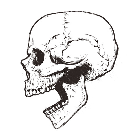 Anatomic Skull Vector Art. Detailed hand-drawn illustration of skull with open mouth. Grunge weathered illustration. Vettoriali