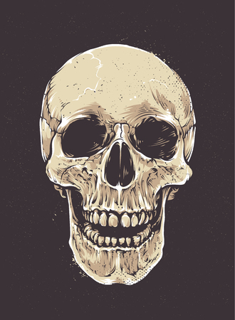Anatomic Grunge Skull Vector Art. Detailed hand drawn illustration of skull on dark background. Colored version. Tattoo style skull art. Grunge weathered illustration. Illustration