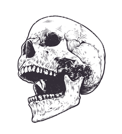 Anatomic Skull Vector Art. Detailed hand-drawn illustration of skull with open mouth. Grunge weathered illustration. Vectores
