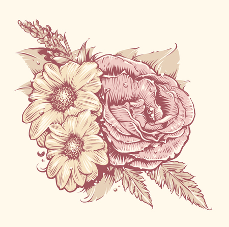 isolated flower: Vector Flowers. Rose and chamomile with leafs. Old fashioned style flowers art. Vintage floral illustration. Illustration