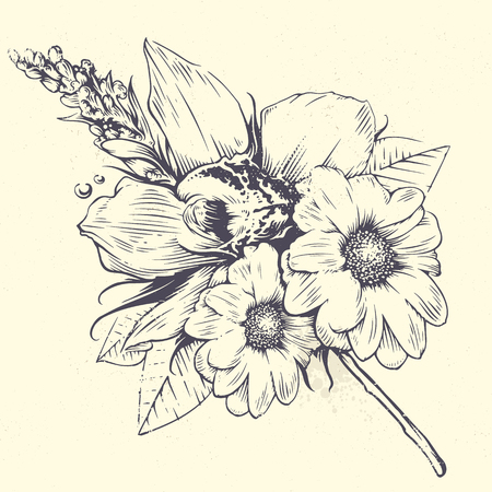 isolated flower: Vintage vector flowers. Orchid and chamomile flowers with leafs. Old fashioned style flowers art. Vintage floral illustration. Illustration