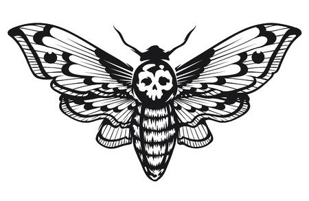 Deaths Head Hawk Moth illustration vectorielle isolé sur blanc. Design graphique de style tatouage. Art vectoriel noir et blanc. Vecteurs