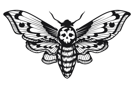 Deaths Head Hawk Moth vector illustration isolated on white. Tattoo style graphic design. Black and white vector art.