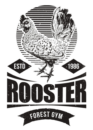 Fighting Rooster Design. Retro styled design template with engraving cock art. Vintage print design. Standard-Bild - 100055091