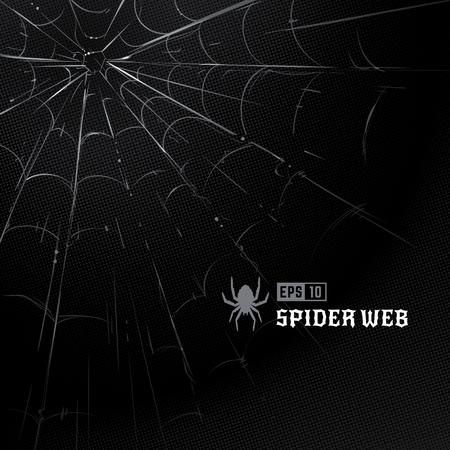 Vector set of spider webs on black halftone background. Hand-drawn spider webs. Vector arts.