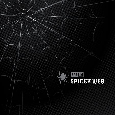 Vector set of spider webs on black halftone background. Hand-drawn spider webs. Vector arts. Stockfoto - 112955824
