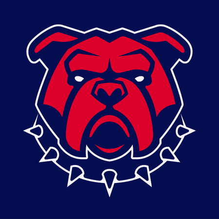 Bulldog in spiked collar vector mascot. Frontal symmetric image of red bulldog looking dangerous. Vector icon. 向量圖像
