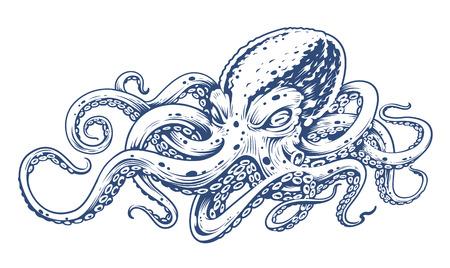 Octopus Vintage Vector Art isolé sur blanc. Illustration vectorielle de style gravure de poulpe. Vecteurs