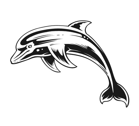 Delfín en movimiento. Arte vectorial de contraste en blanco y negro.