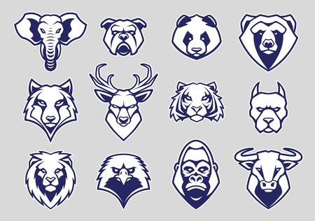 Insieme di vettore delle icone della mascotte della testa degli animali. Diversi animali musi guardando dritto con umore aggressivo. Icone di vettore impostate.