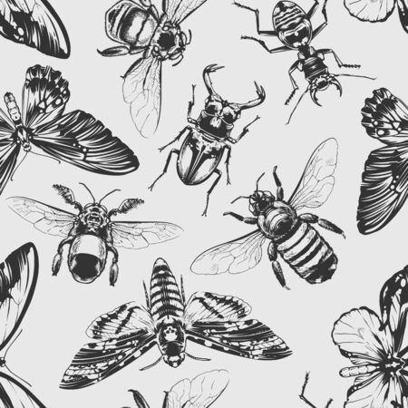 Seamless pattern with vintage style bugs art. Vector endless texture.