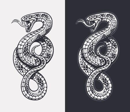 Hand-drawn snake isolated on white and dark background. Detailed engraving vector art of snake. Monochrome illustration. 向量圖像
