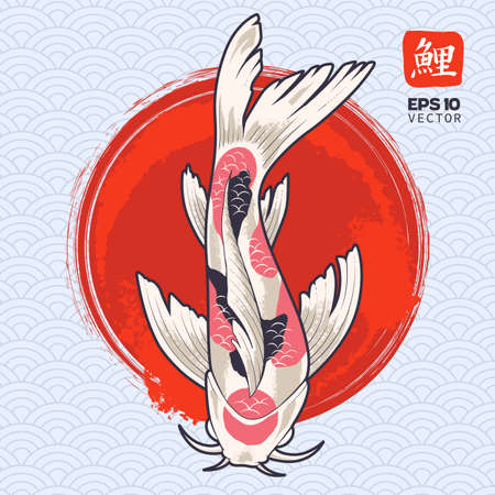 Vector art of koi fish on painted red circle. Japanese carp illustration. Oriental symbolic fish. Vector  graphic. Vectores