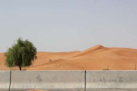 desert sand barrier stone fence stop Desertification