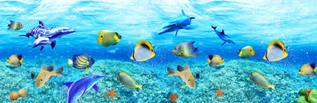 3d illustration wallpaper under sea dolphin, Fish, Tortoise, Coral reefsand water with broken wall bricks background. will visually expand the space in a small room, bring more light