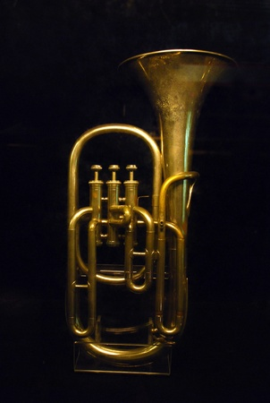 Euphonium is one of Brass Instruments