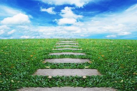 在綠草如茵的方式途徑美麗的星空,圖像背景
