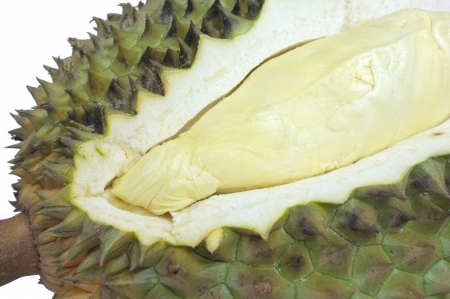 Durian isolated on white background  Stock Photo   photo