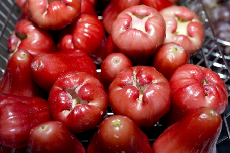 tropical fruits: Red rose apple in steel basket, tropical fruits
