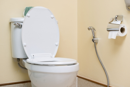 water closet: water closet in Toilet, WC