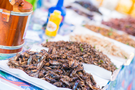deep fried insects for eat, weird food in market Stock fotó
