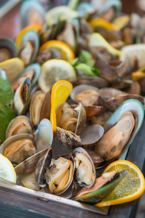 fresh mussel and enamel venus shell on buffet line seafood, eat photo