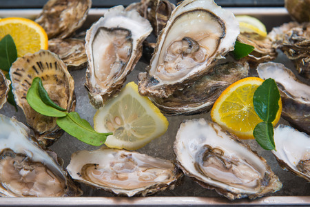 fresh oyster on buffet line, food photo