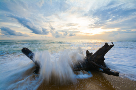 granola: big wave into the beach, sea