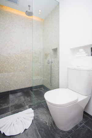 miror: shower and flush toilet in bathroom, home