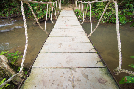 rope bridge: rope bridge over the river in forest, way