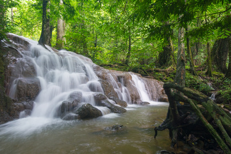 upstream: beautiful waterfall in forest, nature Stock Photo