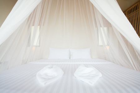 nets: white mosquito net over a bed in a luxurious hotel, interior