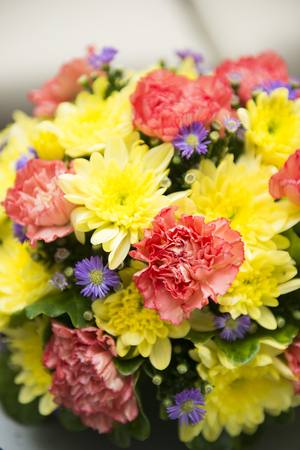 the flora: colorful flowers for decoration, flora Stock Photo
