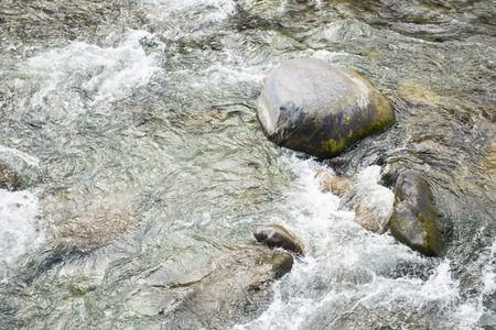 riverside trees: water of stream flows through between the stones, natural Stock Photo