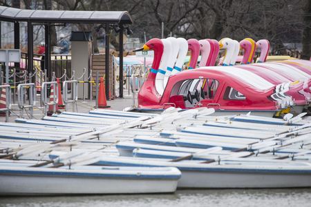 pedal: rowboat and pedal boats in the public park, Japan Stock Photo