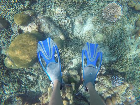 flippers: piernas con las aletas en bajo el agua, equipos
