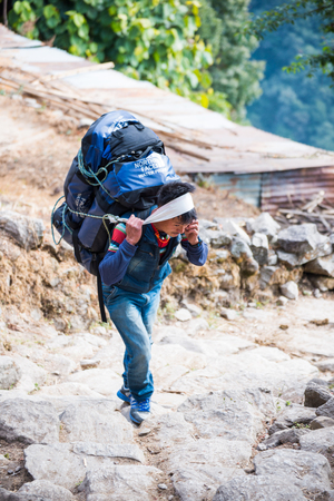 sherpa: Nepal - 25 December 2016 :: Sherpas carry heavy backpack and walk to mountain , trekking
