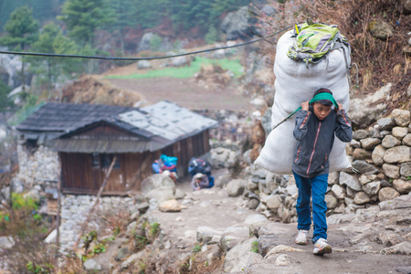 8 April 2018 - Nepal ::A little porter carry starw for feed animal , Nepal