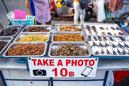deep fried insects weird food at Khao San Road Bangkok,Street food