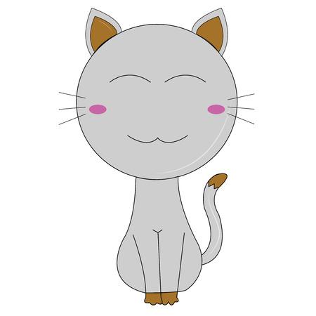 Grey cat on white background photo