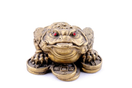 3 Legged Toad on a Bed of Coins Stock Photo