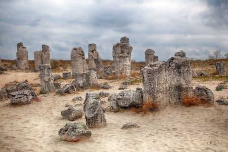 high dynamic range: Surprising phenomenon of the nature-Stone Forest in Bulgaria  HDR image