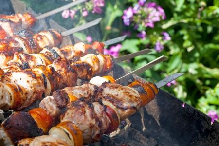 shishkabab: Shish kebab on skewers