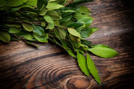 Branch of laurel bay leaves on a wooden board