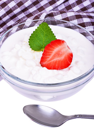 quark: Fresh cottage cheese with mint leaves