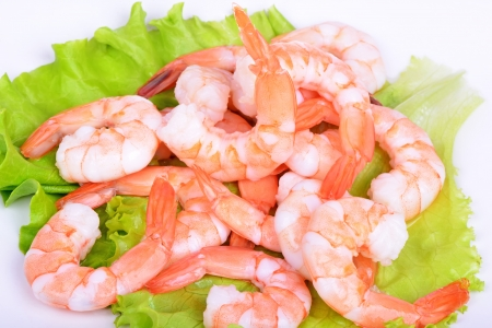 shrimp cocktail: Shrimps and salad on a white background Stock Photo